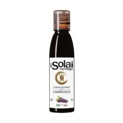 Balsamic Vinegar Lambrusco Cream - I Solai - 180gr