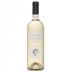 White Wine Chlamys Vermentino di Sardegna - Accademia Olearia - 750ml