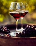 High quality red Italian wines - Shop online